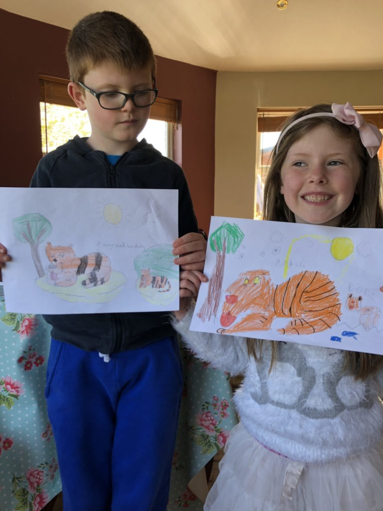 Boy and girl holding up 2 pictures of tigers that they drew when watching Don Conroy
